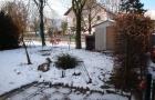 Freisitz -Garten